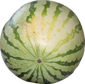 watermelon-1379113_640.png